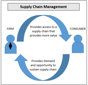 Supply chain strategy options
